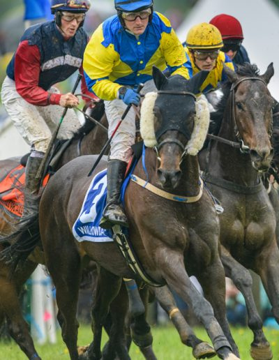 WILLOWDALE STEEPLECHASE RACES